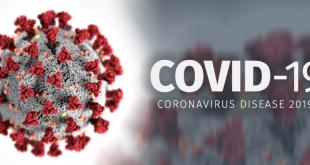 Koronavirüsü Bütün Dünyayı Ele Geçirdi, peki Koronavirüsü nedir? (İngilizce Haber)